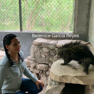 Berenice Garcia Reyes